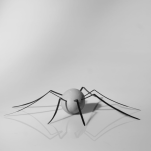 aracnof-ovo-puntodeancla
